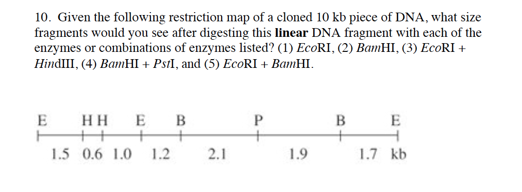 restriction mapping of dna fragments pdf