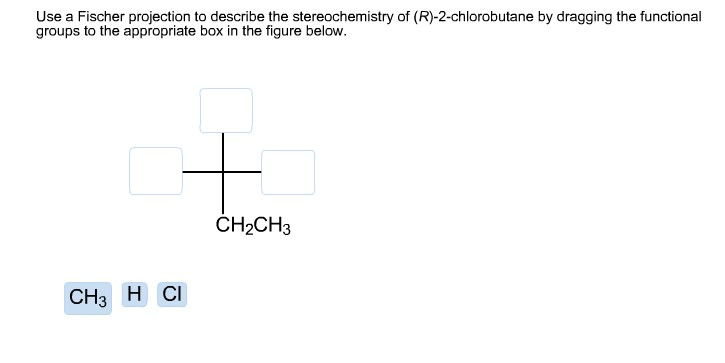 R 2 Chlorobutane Fischer Projection Solved: Use A Fischer ...