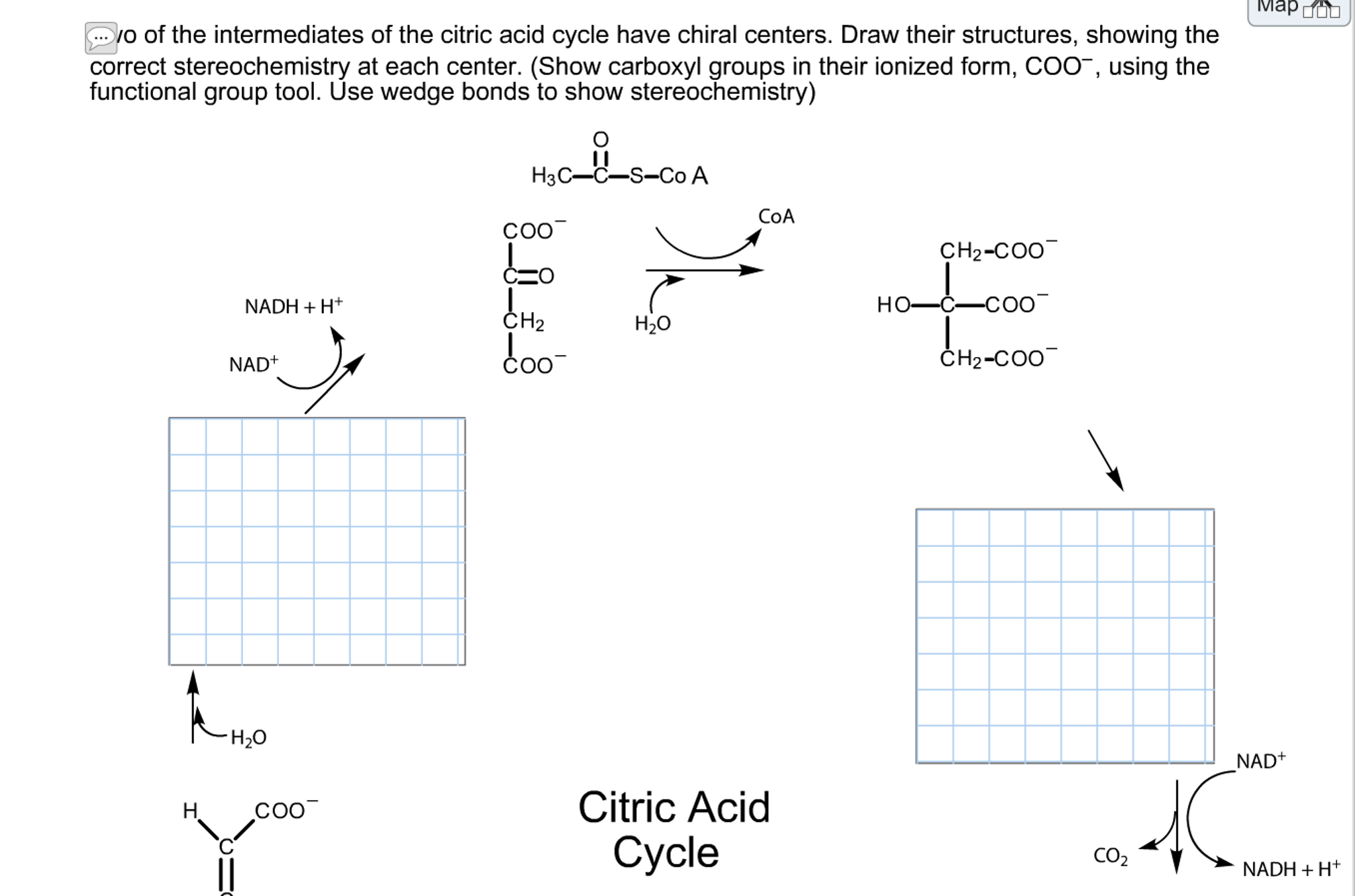 Solved two of the intermediates of the citric acid cycle question two of the intermediates of the citric acid cycle have chiral centers draw their structures sho pooptronica Image collections