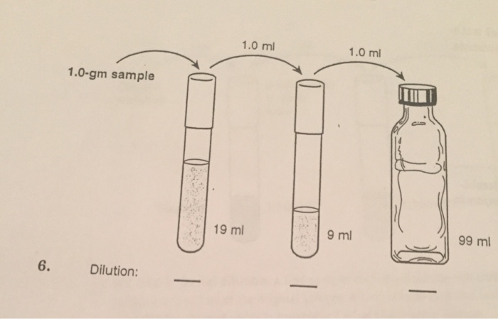 Solved Calculate The Serial Dilution Chegg