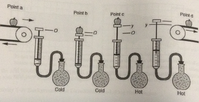 ideal gas equation of state pdf