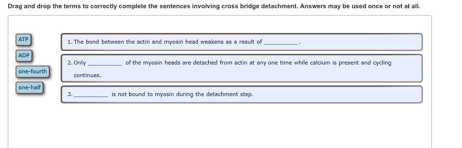Show transcribed image text Drag and drop the terms to correctly complete  the sentences involving cross bridge detachment  Answers may be used once  or not. Drag And Drop The Terms To Correctly Complete The       Chegg com