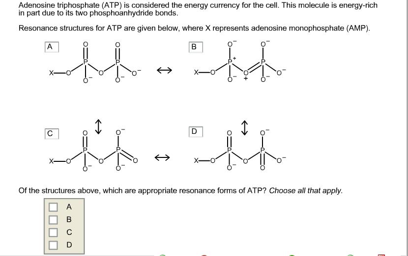 Phosphoanhydride