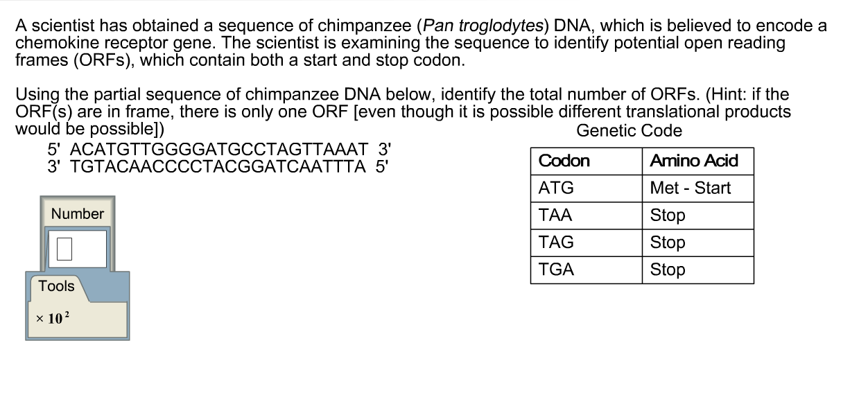 organism used to synthesise (a) dna synthesis starts at a specific place on a chromosome called an origin in  the first  most organisms, including mammals, use bi-directional replication.