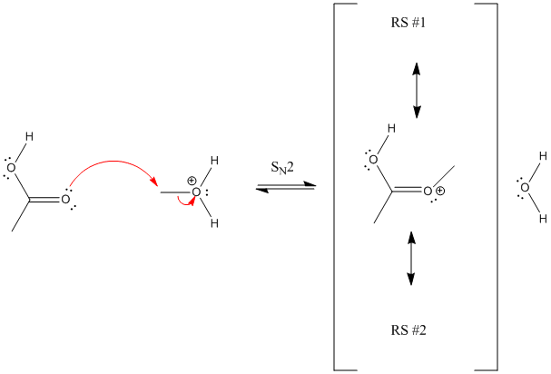 Another plausible mechanism for the esterification