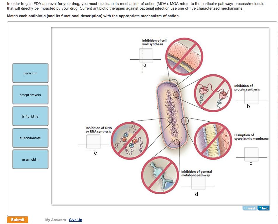 Tetracycline mode of action / Medicament prednisolone zentiva