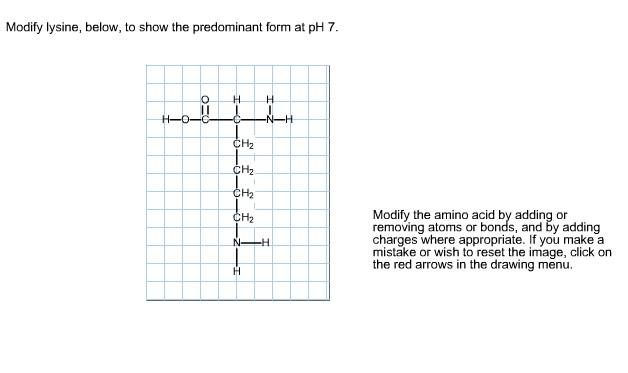 homework help 4 u