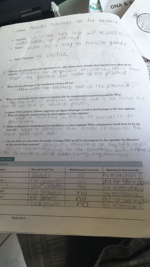 Write a scientific lab report based on the picture chegg write a scientific lab report based on the pictures of that exercise format includes abstractintroductionmethodsresultsdiscussion malvernweather Images