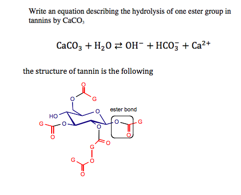 Write an equation describing the hydrolysis of one