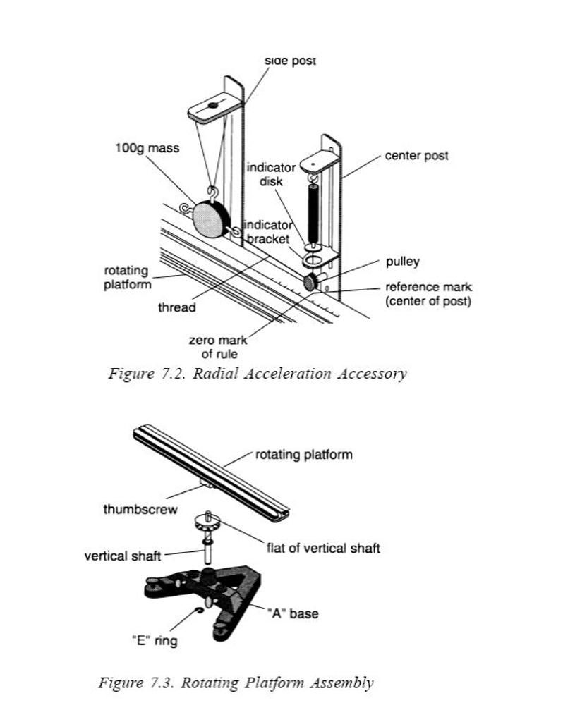 bacteria cell vs plant venn diagram  u2022 wiring and engine