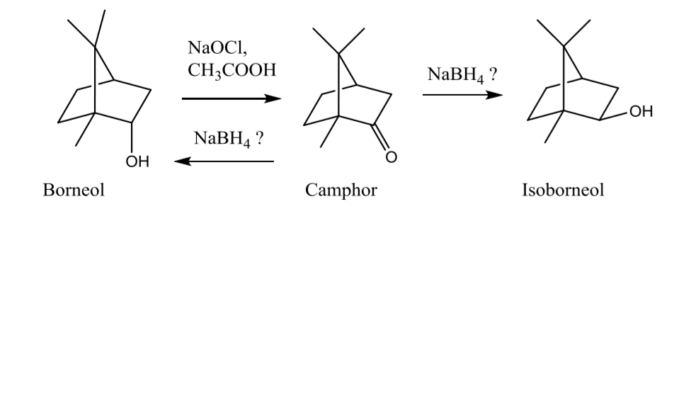 """oxidation of isoborneol essay Green oxidation of borneol to camphor with oxone purpose the goal of this   essay compare locke's account of the """"state of nature"""" with either or both of."""