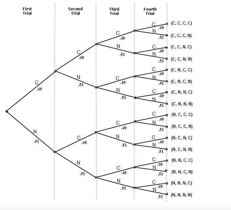 solved 4 binomial tree diagrams aa aa data from the u s rh chegg com statistics tree diagram coin flip statistics tree diagram examples