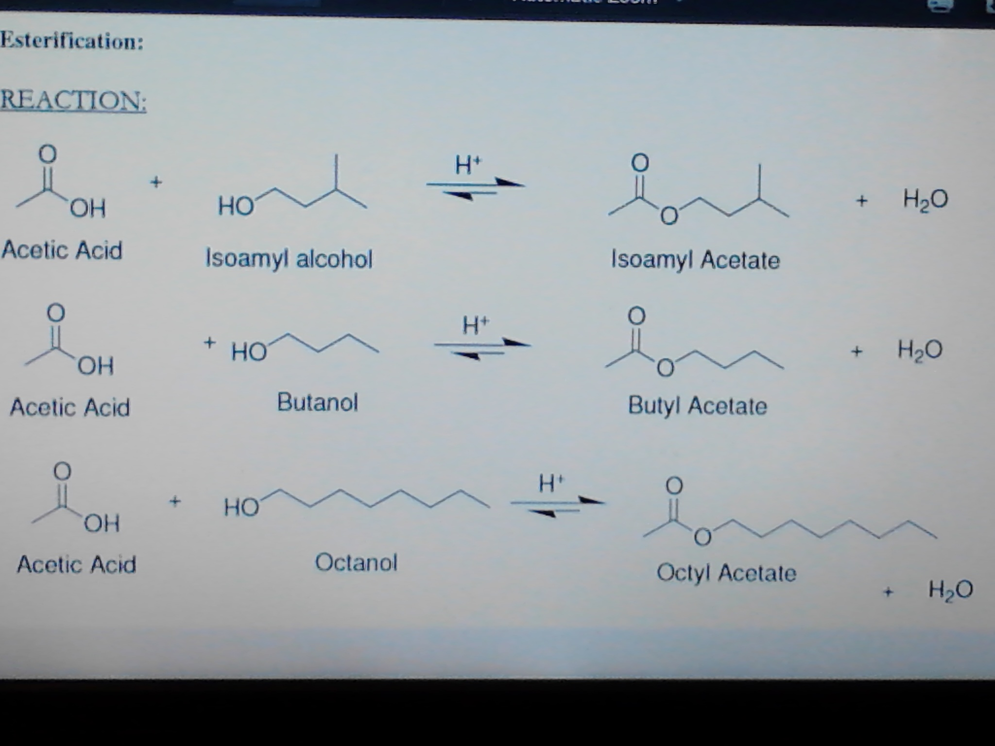 reaction form synthesis of isopentyl acetate Start studying chm 206 learn vocabulary  and 1 ml of isopentyl acetate what kind of bonds do grignard reactions form.