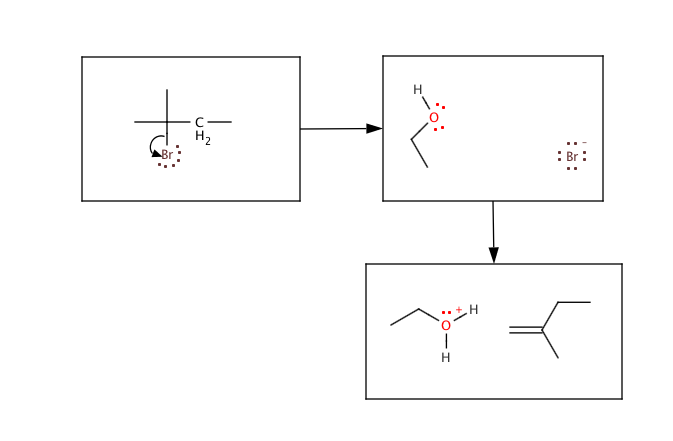 2-Bromo-2-methylbutane Undergoes An E1 Elimination...   Chegg.com