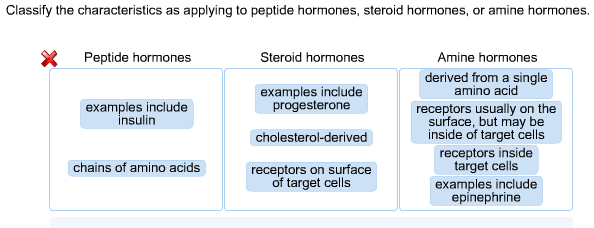 Solved Classify The Characteristics As Applying To Peptid