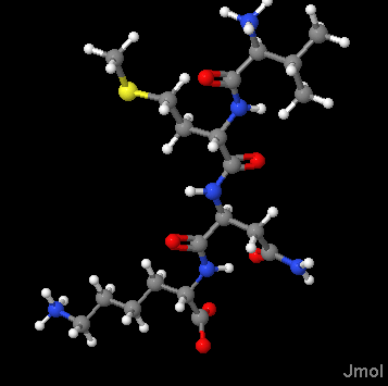 Solved give the amino acid sequence in the following tetr question give the amino acid sequence in the following tetrapeptide using both 3 letter and 1 letter abbre thecheapjerseys Images