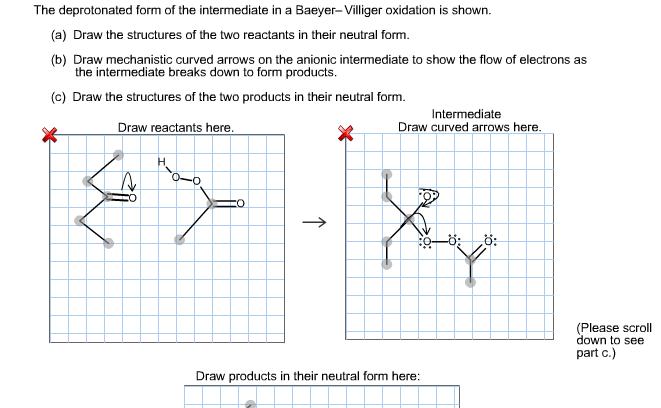 The Deprotonated Form Of The Intermediate In A Bae... | Chegg.com