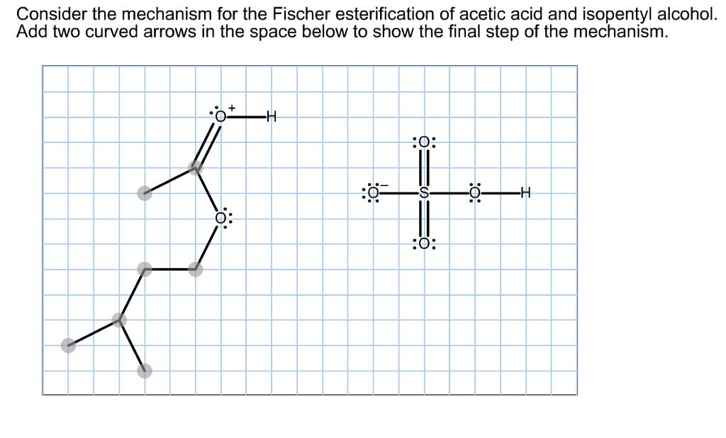 esterification of isopentyl alcohol to isopentyl acetate essay Saved essays  and 3-methyl-1-butanol or isopentyl alcohol, the ester isopentyl acetate  glacial acetic acid undergoes esterification with isopentyl alcohol.