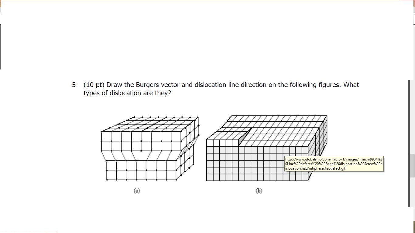 Homework burgers