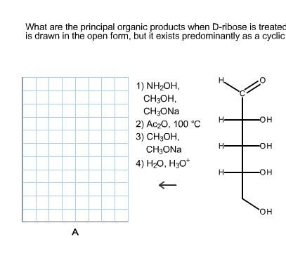 What are the principal organic products when D-rib