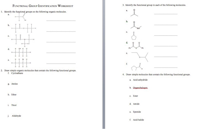 Identify The Functional Groups On The Following Or – Functional Groups Worksheet