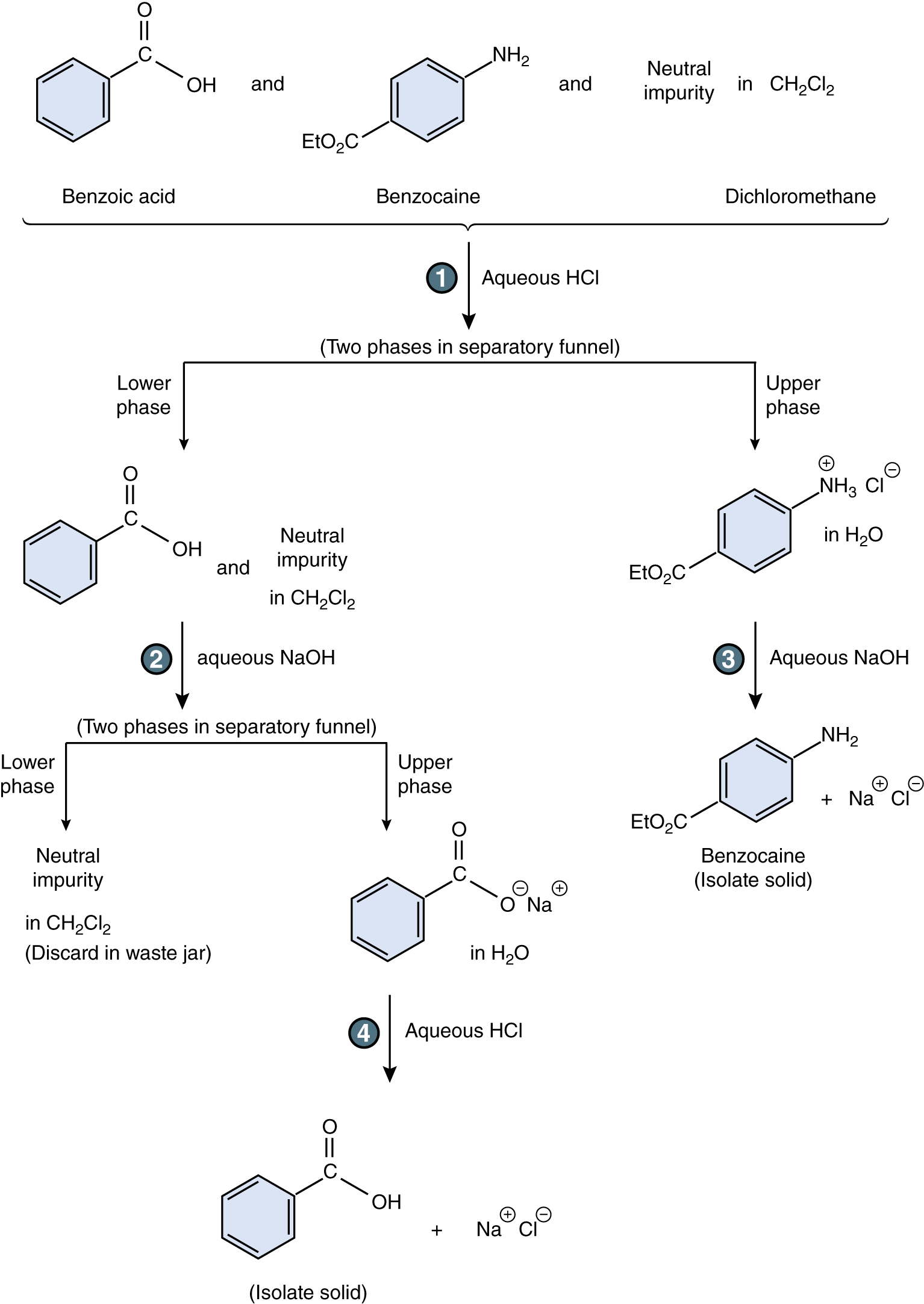 synthesis of benzocaine Synthesis the synthesis of benzocaine is carried out by the acid-catalyzed esterification of 4-aminobenzoic acid with ethanol: in a 5-ml round bottom flask.