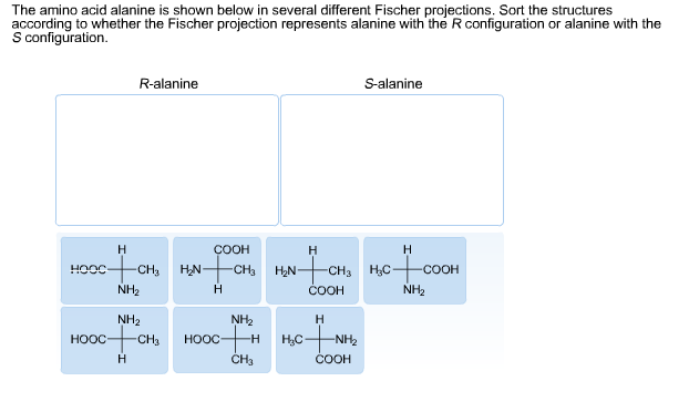 how to draw fischer projection amino acid