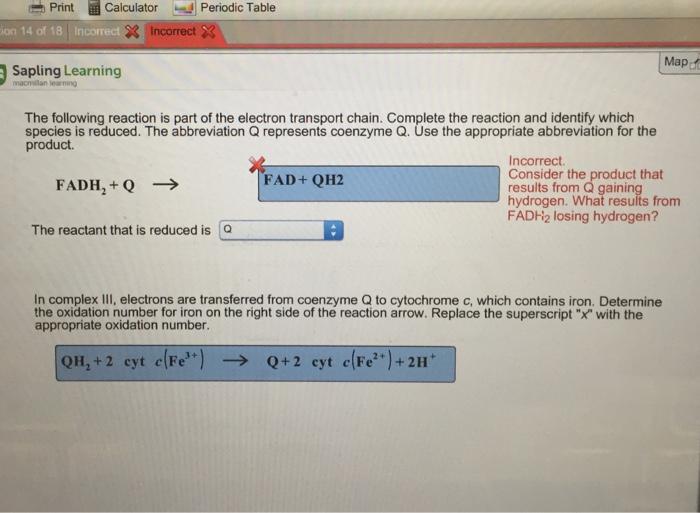 print calculator periodic table ion 14 of 18 incor - Periodic Table Abbreviation For Iron