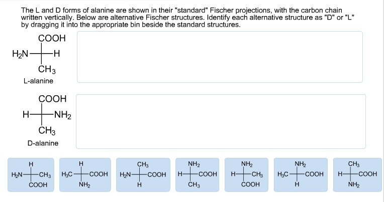 R 2 Chlorobutane Fischer Projection Chemistry Archive | Ma...