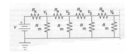 (1)   Figure below illustrate resister n
