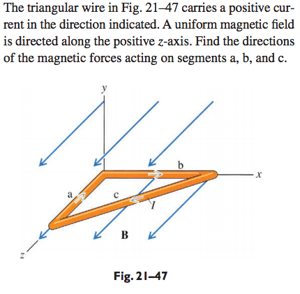 The Triangular Wire In Fig. 21-47 Carries A Positi... | Chegg.com