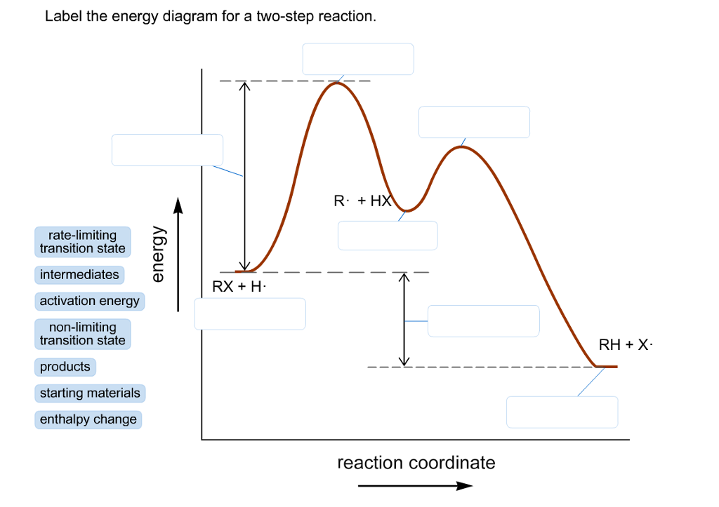 Label The Energy Diagram For A Two-step Reaction. | Chegg.com