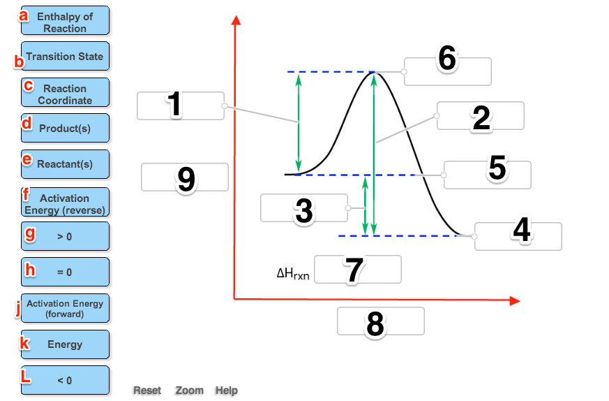 Label The Following Reaction Coordinate Diagram By...   Chegg.com