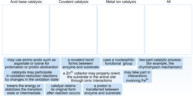 enzymology and catalytic mechanism essay The mechanism of enzyme catalysis in order for a reaction to occur, reactant  molecules must contain sufficient energy to cross a potential energy barrier, the.