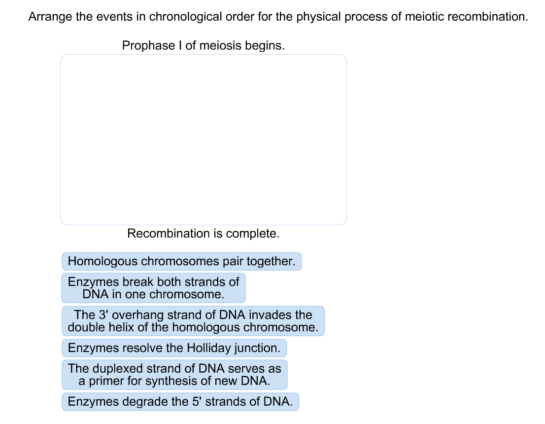 arrange the events in chronological order for the - Cronological