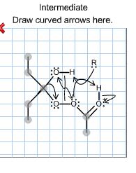 The Protonated Form Of The Intermediate In A Baeye... | Chegg.com