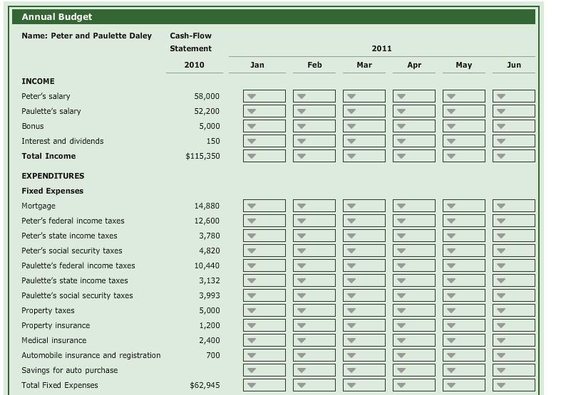 format for cash flow