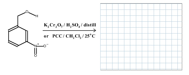 Draw The Correct Organic Product Of The Following