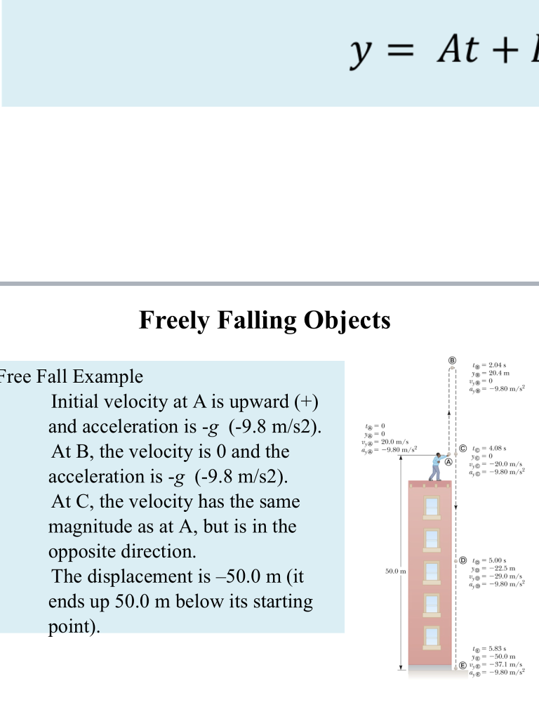 Free Fall Example Initial Velocity At A Is Upward Chegg