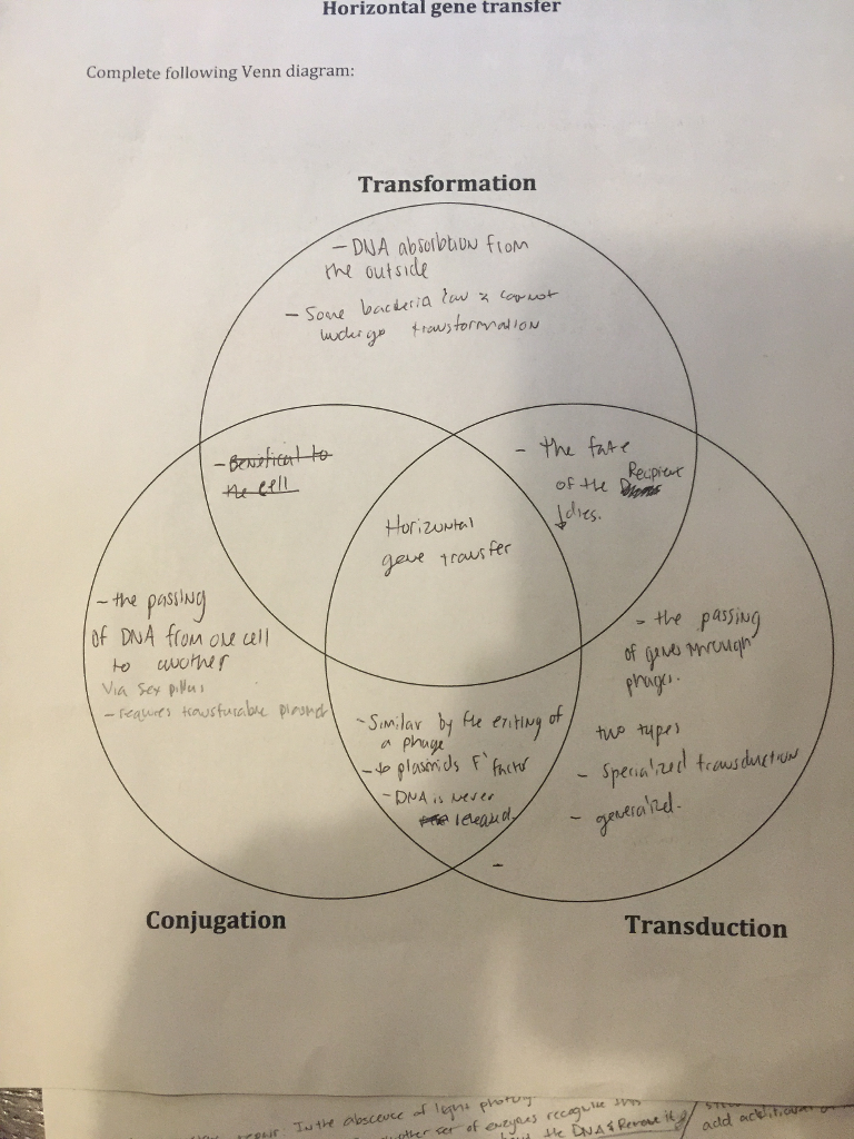 Solved horizontal gene transter complete following venn d horizontal gene transter complete following venn diagram transformation outside the fur recpiot d1ts geve pooptronica Images