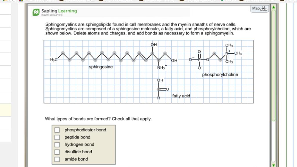 sapling homework answers
