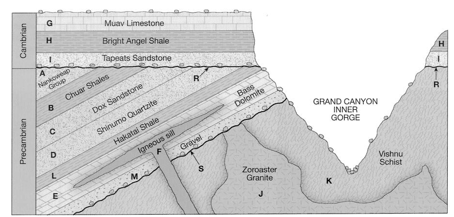 Geologic cross section relative dating principles 7