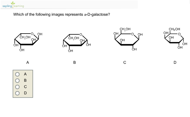 D Galactose Sapling Learning Which...