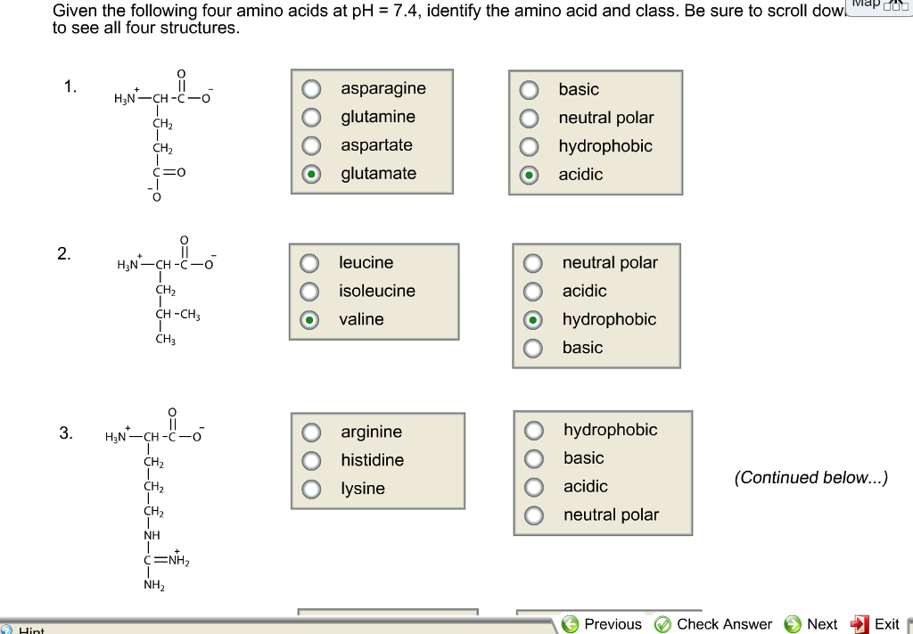 identify an amino acid B identify the amino acids with ionizable side chains, c identify the amino acids whose side chains are non-polar 2 draw glycine, lysine, and glutamic acid below.