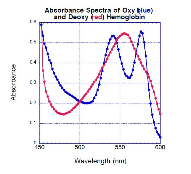 So the absorbance spectrum below is of a solution