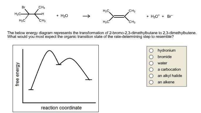 2Butene 23dimethyl  C6H12  PubChem