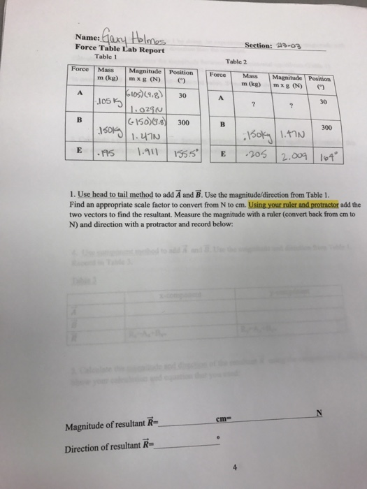 physics force table lab report The laboratory report is designed to answer the describe the fundamental physics required to address the force table by setting a pulley on the force table.