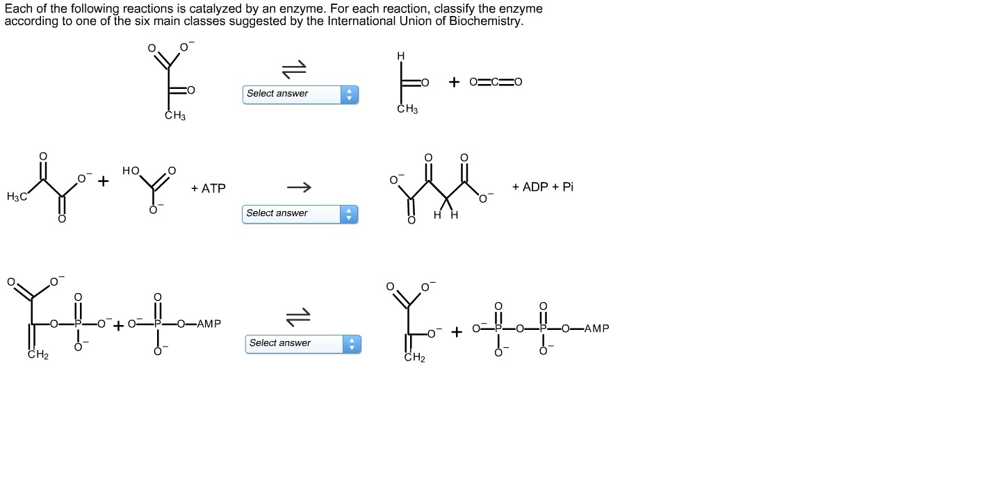 Each of the following reactions is catalyzed by an