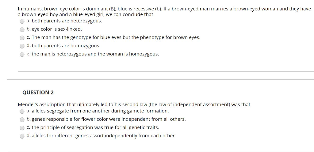 In humans, brown eye color is dominant (B); blue is recessive (