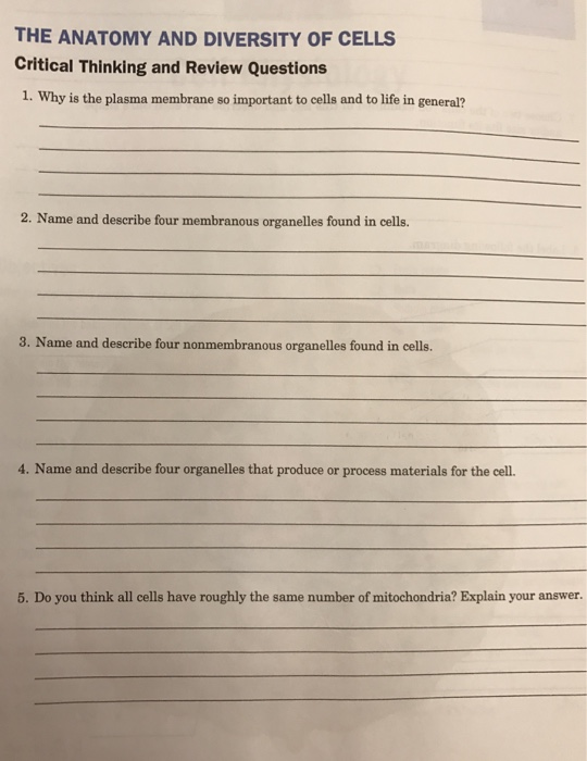 Cell Biology Review Questions Pinterest